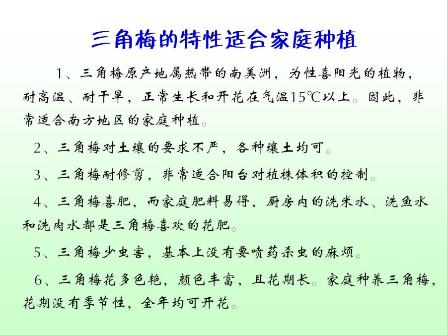三角梅的欣赏与家庭种植 (42).jpg