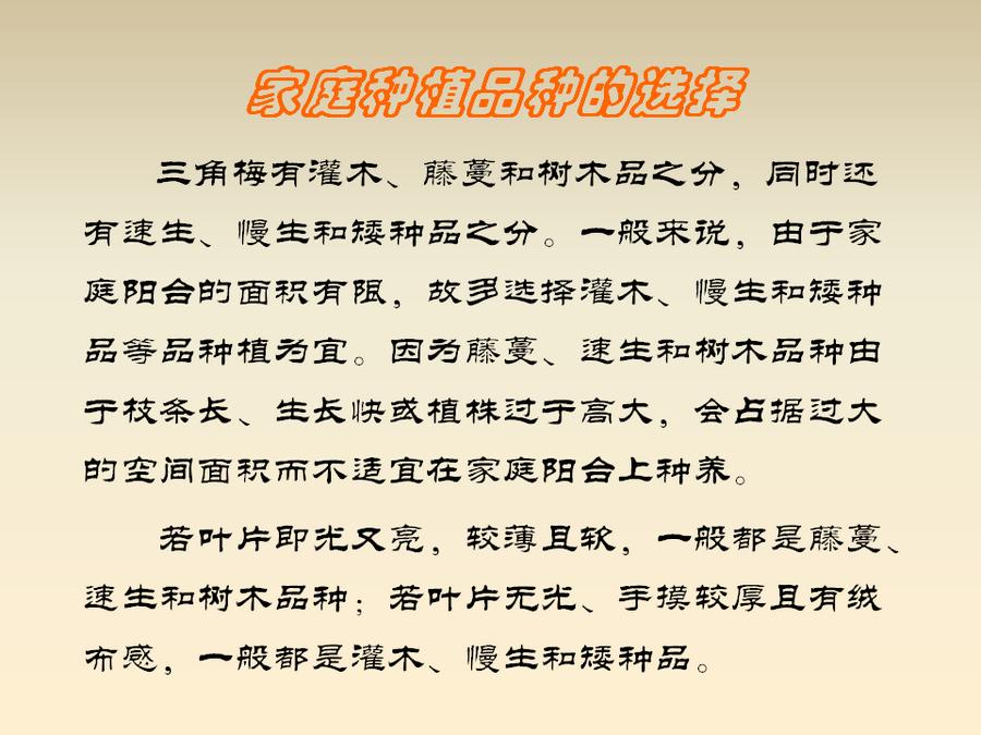 三角梅的欣赏与家庭种植 (43).jpg