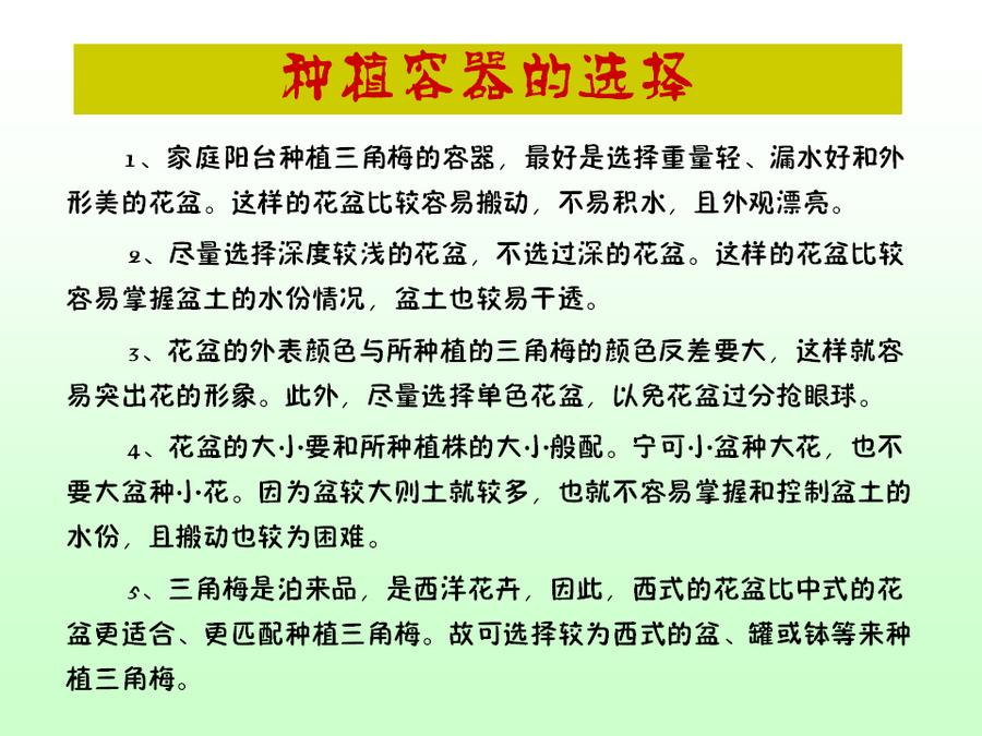 三角梅的欣赏与家庭种植 (45).jpg