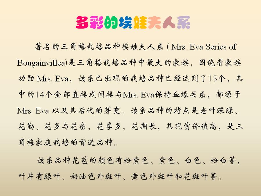 三角梅的欣赏与家庭种植 (58).jpg