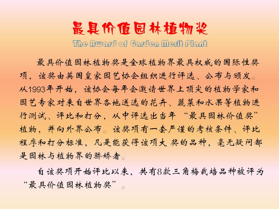 三角梅的欣赏与家庭种植 (117).jpg