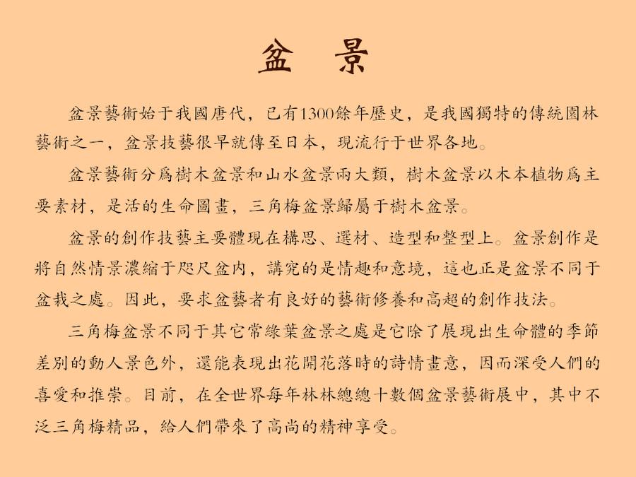 三角梅的欣赏与家庭种植 (127).jpg