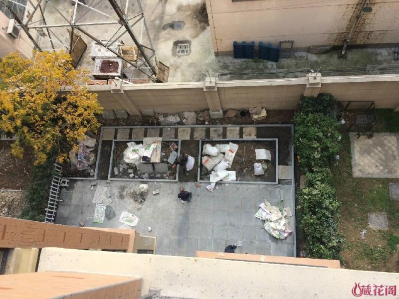 从六楼冒着生命危险拍来的,两边的步道还没完全铺好