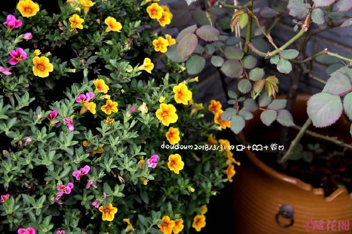 IMG_7647-2.jpg