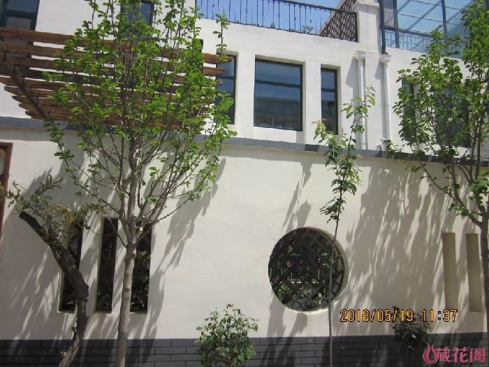 墙外玉兰、樱花、紫藤、树月,期待明年花开