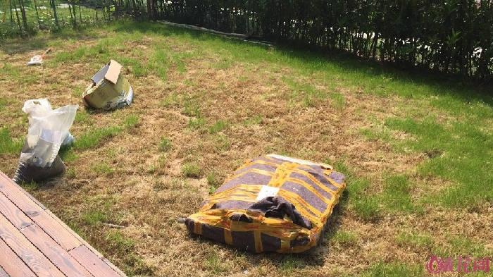 开始弄了,先是把草全部打薄了。堆起来的杂草还挺高的。舍不得扔,想做堆肥,但又不会,就简单的堆到院子西 ...