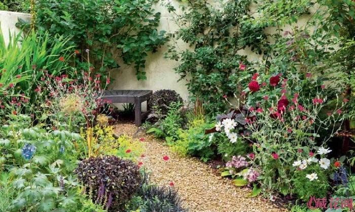 坐这里看花园的一草一木和生长
