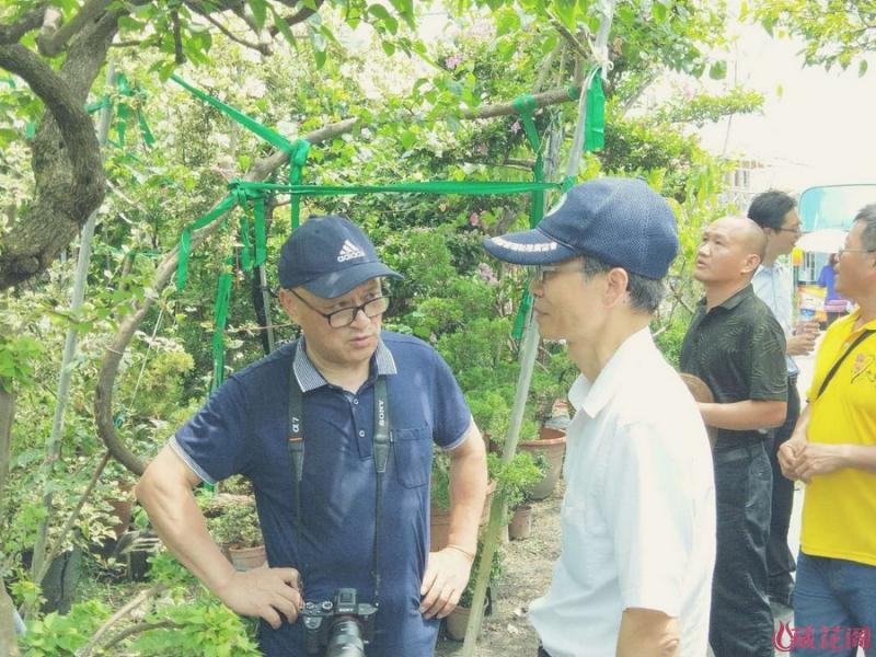 和张教授在辉丰园艺种植场内交谈.jpg