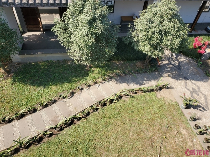 南院俯视图2.jpg