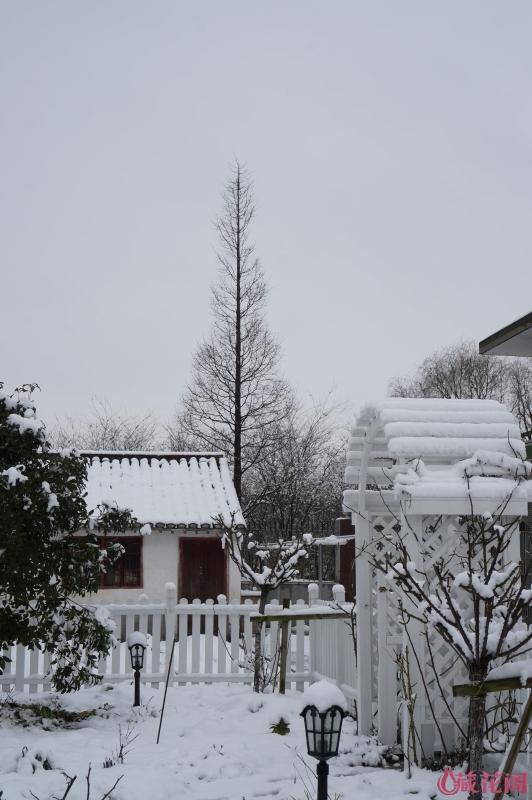 雪后,有没有童话般的感觉